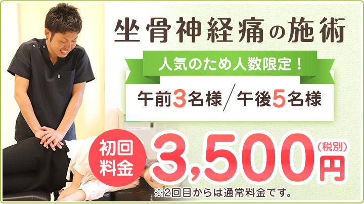 坐骨神経の施術 初回料金3500円(税別)